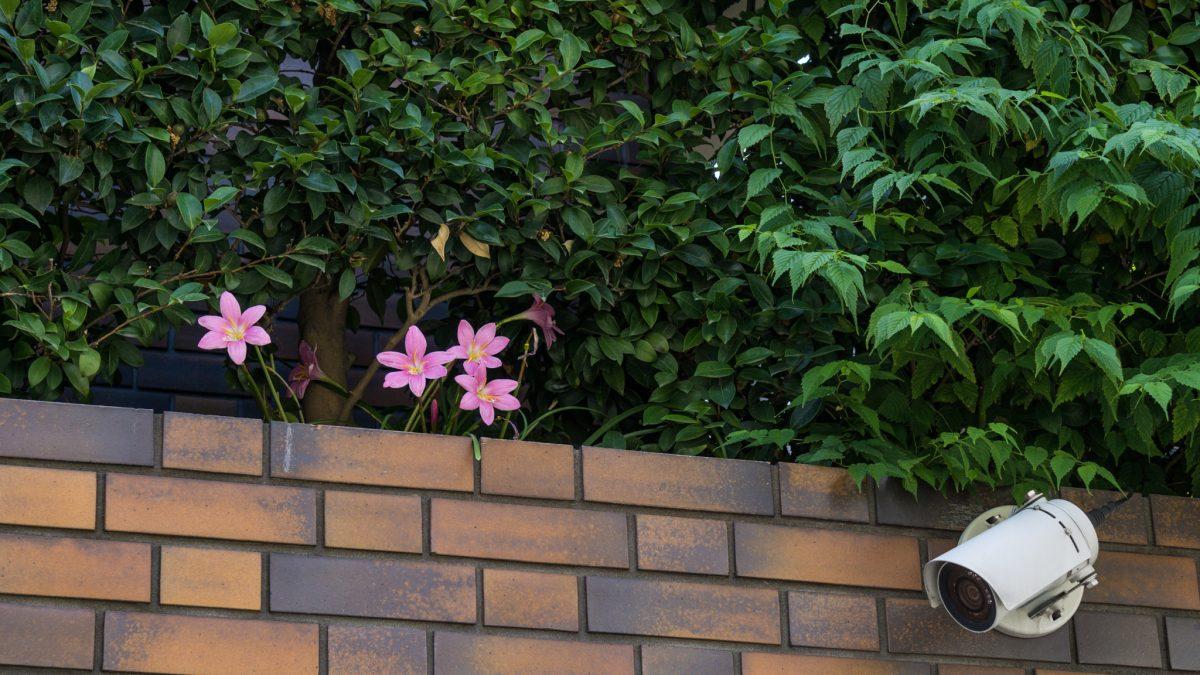 Los 5 mejores lugares para instalar c maras de vigilancia - Los mejores ambientadores para el hogar ...